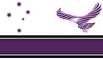 DF Peace Flag