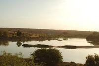 BixNood Safari