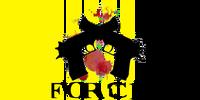 FORCE alliance flag