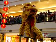 Indo baru lion dance