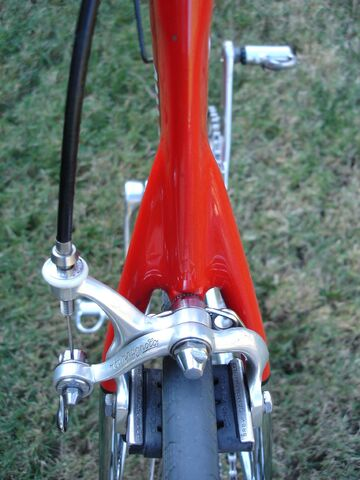 File:Serotta+Wishbone+seatstay-2834.jpg