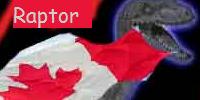Toronto Raptor