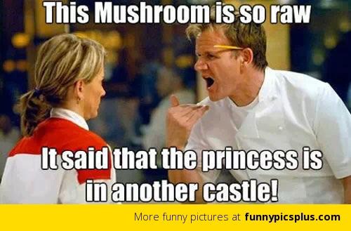 File:Raw mushroom.jpg