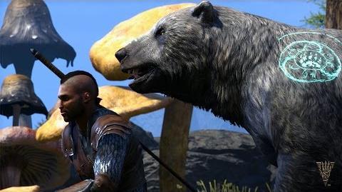 The Elder Scrolls Online Morrowind – Warden Gameplay Trailer