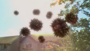 180px-Rakweedattack