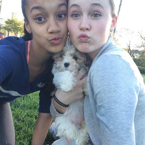 File:Kaeli Ware and Bella Hoffheins April2015 03.jpg