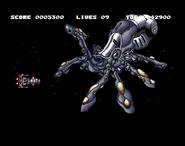 D Octopusw01