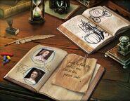 Amelia books