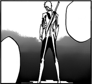 Ichigo fullbring rear