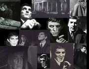 Barnabas Collins Collage