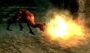 Flaming Attack Dog Action