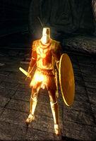Solaire phantom