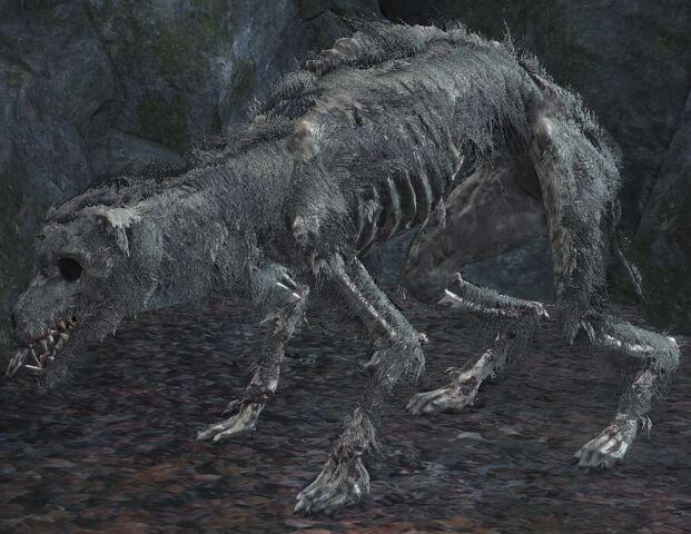 File:Starved hound.jpg