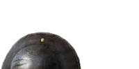 Buckler (Dark Souls II)