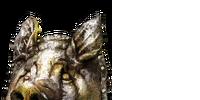 Porcine Shield