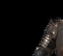 Lapp's Armor