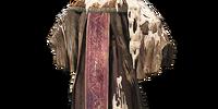 Scholar's Robe