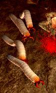 Vile maggot01