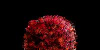 Bloodred Moss Clump (Dark Souls III)