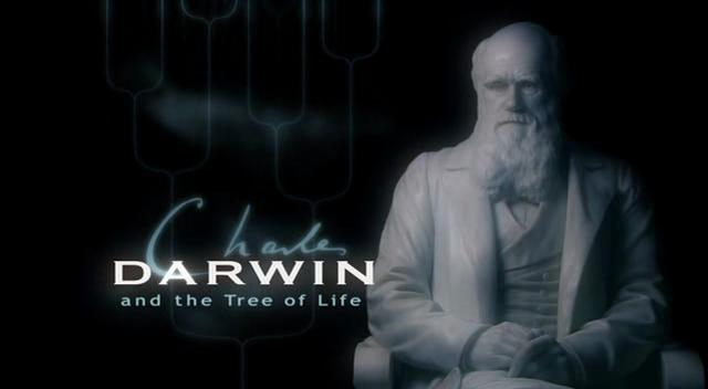 File:Tree-of-life-title-card.jpg