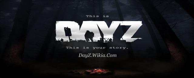 File:DayZ.png