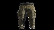 Beige Cargo Pants Model (D-BD)