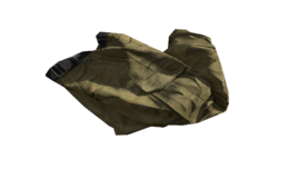 Beige Cargo Pants (P-W)