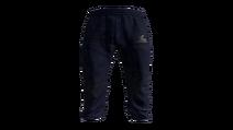 Blue Tracksuit Pants Model (P-W)
