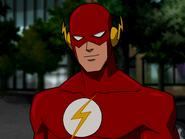 Barry Allen (DC Universe (animated universe))