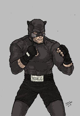 File:Wildcat.jpg