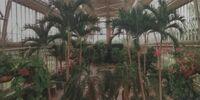 Wayne Botanical Garden