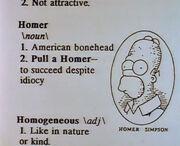 Homer Dict..jpg