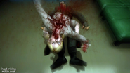 Dead rising case the facts (27)