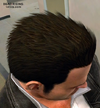 Dead rising clothing Brown Hair Dye