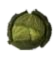 File:Rotten Cabbage.png