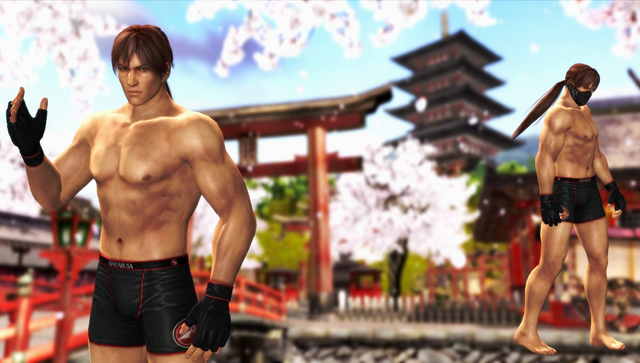 File:DOA5 Ryu Hayabusa Fighter Pack DLC.png
