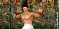 Jann Lee/Dead or Alive 3 costumes