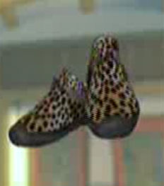 File:DOAXBVLeopardPrintSneakers.jpg