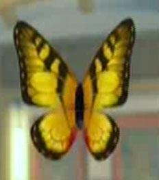 File:DOAXBVButterflyHairClip(Yellow).jpg