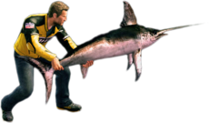 Dead rising swordfish alternate