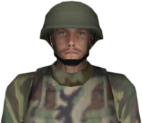 Dead rising national guard bust