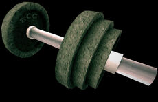 Dead rising dumbell with initials SCG