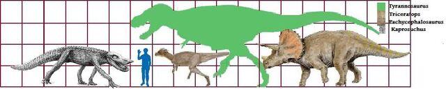 File:Trike T rex Pachy Kapro scale.jpg