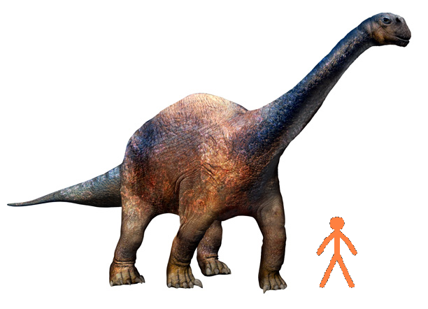 File:Human-Argentinosaurus size comparrison.png