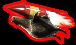 Rocketchicken