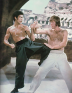 Way of The Dragon - Bruce Lee and Chuck Norris as they appear in that film