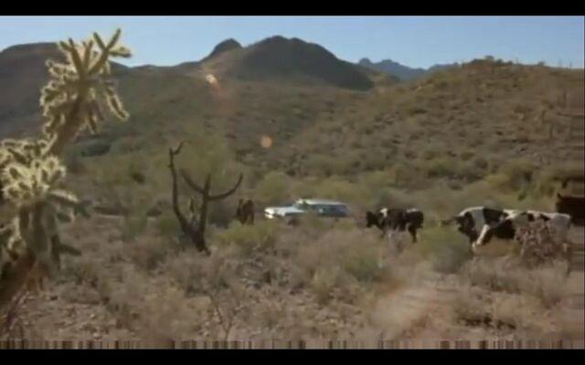 File:Land near Tucson.JPG