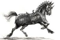 Kashir horse