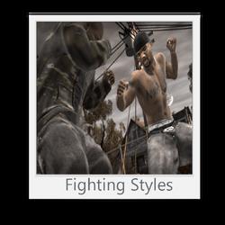 Fighting Styles (DJI)