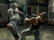 -Def-Jam-Fight-for-New-York-PS2-